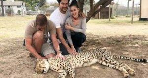 Фахрие Эвджен и Бурак Озчивит отдыхают в ЮАР