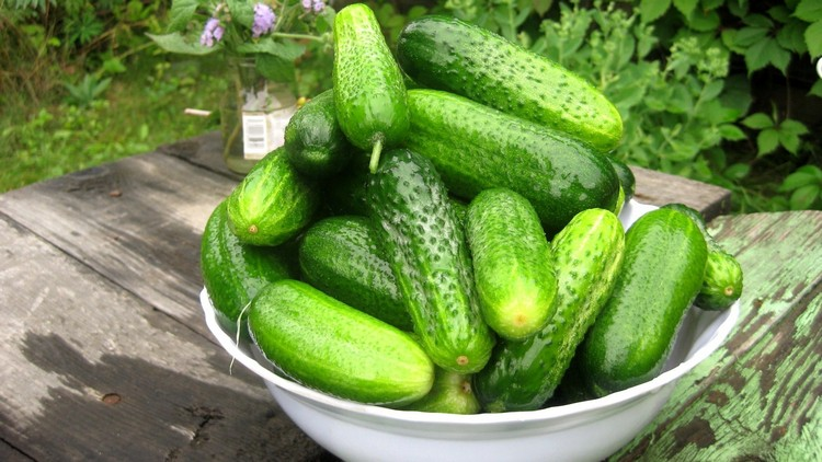 Разгрузочный день на салате из огурцов